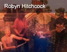 Robyn Hitchcock