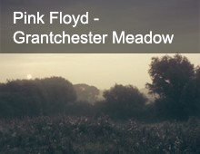 Pink Floyd – Grantchester Meadow