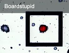 Boardstupid